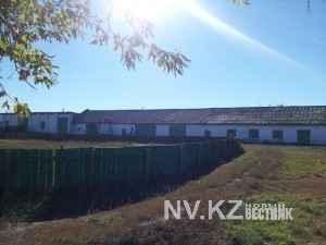 В поселке Кокпекты закрыли единственный колледж