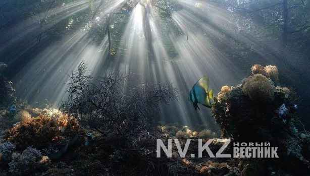 nadya-kulagina-1